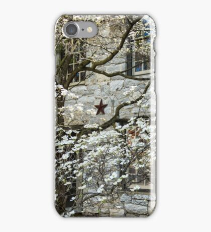 dogwood blossoms iPhone Case/Skin