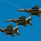 In Formation by dmvphotos