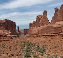 Arches National Park 2 by Michele Markley
