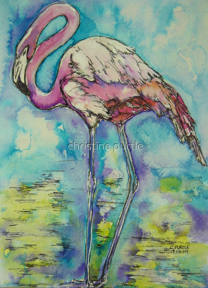 Flamingo by christine purtle