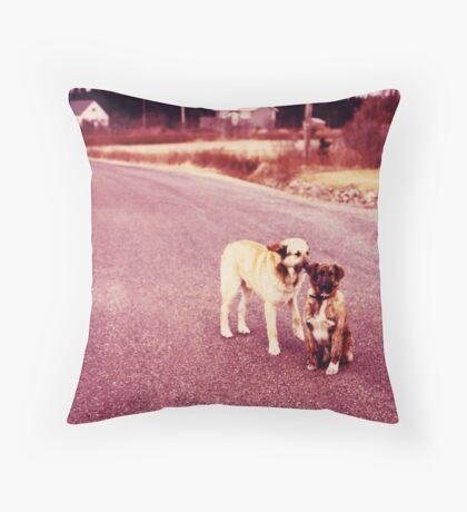 Duck's Pond, NB #1 Throw Pillow