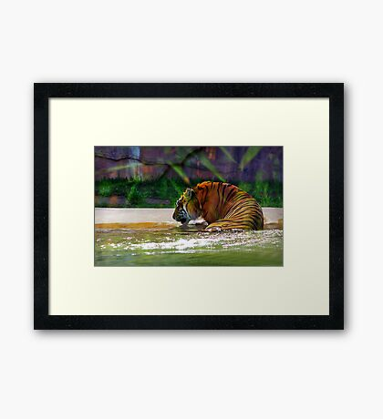 """""""It's my birthday and all I get is water"""" Framed Print"""
