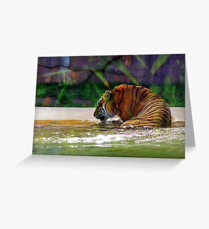 """""""It's my birthday and all I get is water"""" Greeting Card"""