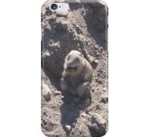 Fat Groundhog iPhone Case/Skin