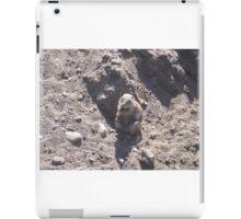 Fat Groundhog iPad Case/Skin