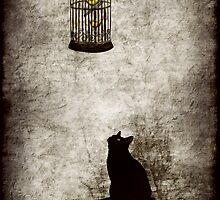 Temptation by Amanda  Cass