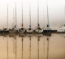 Fog and moored boats by Arletta Cwalina