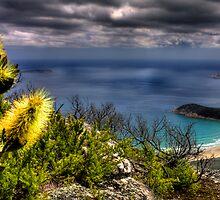 Up on Mt. Oberon by Arek Rainczuk
