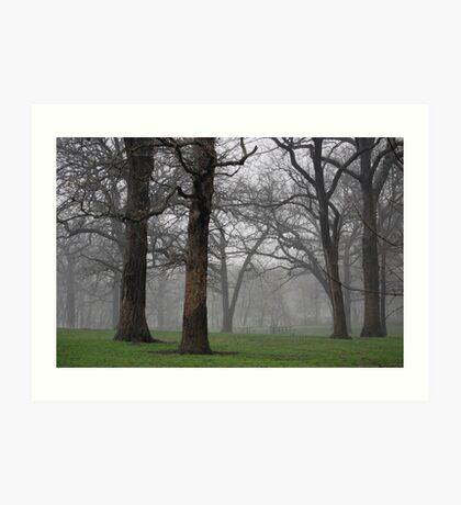Thomas Mitchell Park 1 Art Print