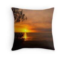Darwin Beach Throw Pillow
