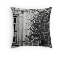 Where Memories Lived Throw Pillow
