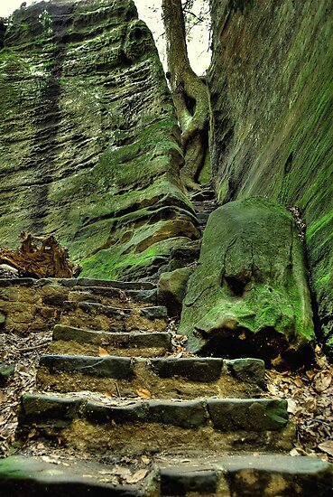 Old Mans Cave Hocking Hills by Kate Adams