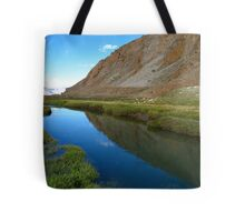 water and grassland. ladakh, india Tote Bag