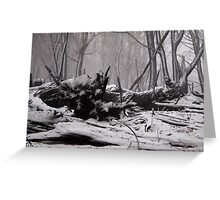 White Ash Greeting Card
