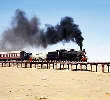 Steam train at Eurelia, South Australia by Christopher Biggs