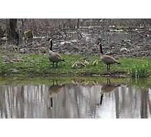 Family Reflection Photographic Print