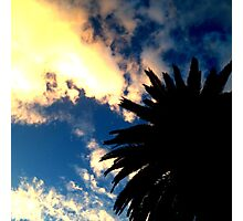 Palm Tree Silhouette - The Sun Behind The Clouds Photographic Print