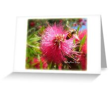 Bee and Red Bottle Brush Greeting Card