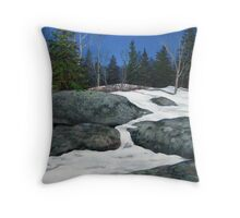 Spring Thaw at the end of the Second Lagoon Throw Pillow