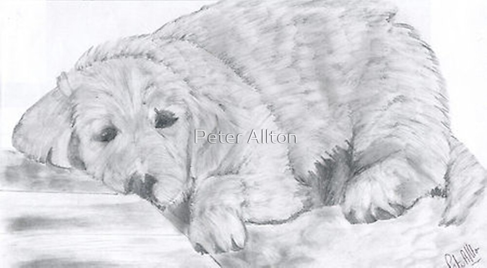 lazy bones by Peter Allton