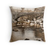 Images of a Victorian traveller #6 Throw Pillow