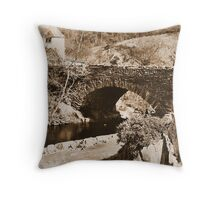 Images of a Victorian traveller #7 Throw Pillow