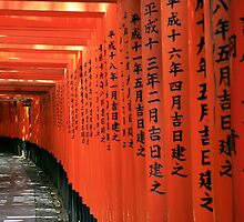 Inari the red by urbanangel