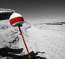 Red Buoy by capecodart