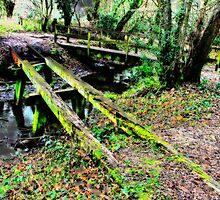 Old Bridge, Chilworth Gunpowder Mills  by Colin J Williams Photography