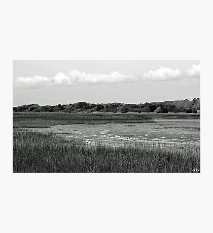 """Marsh"" Low Tide Photographic Print"