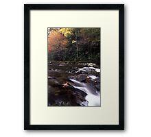 A Splash of Fall Framed Print