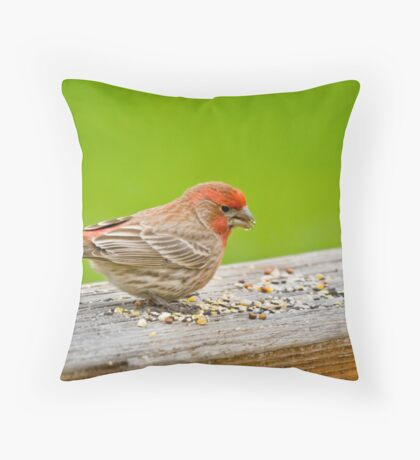 At Lunch Throw Pillow