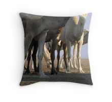 United colors of the desert... Throw Pillow