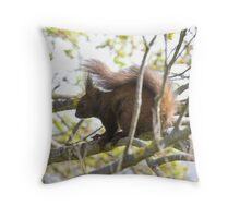 Gupole Red Squirrel 1 Throw Pillow