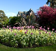Lower Gardens, Bournemouth 2 by bubblebat