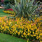 Lower Gardens, Bournemouth 4 by bubblebat