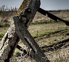 Dejected gatepost by Jonathon Speed