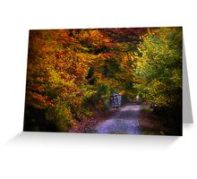 Black Forest in Automn Greeting Card