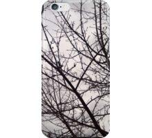 Lace #24 iPhone Case/Skin