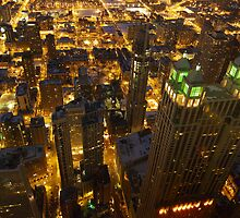 View from the 96th Floor by Ted Lansing
