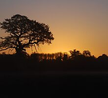 Dawn Silhouette by Simon Pattinson