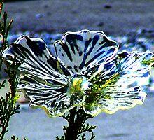 Chrystal Flower. by Paul Rees-Jones