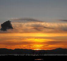 Setting Sun by Jan  Tribe