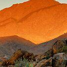 Richtersveld Sunset by Thomas Peter