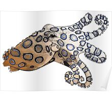 Blue-Ringed Octopus Color Poster