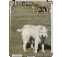 Adorable Great Pyrenees iPad Case/Skin