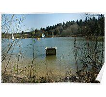 Man-made Lake Poster