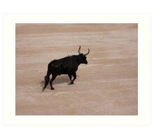 Bull in Arles Art Print