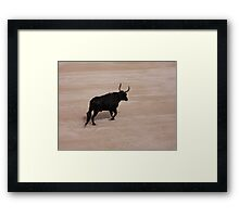 Bull in Arles Framed Print