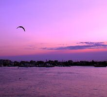 Fly into the sunset.. by introspectionx